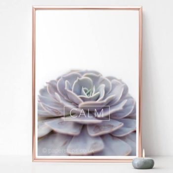 Motivational calm word print calm echeveria plant home decor print zen