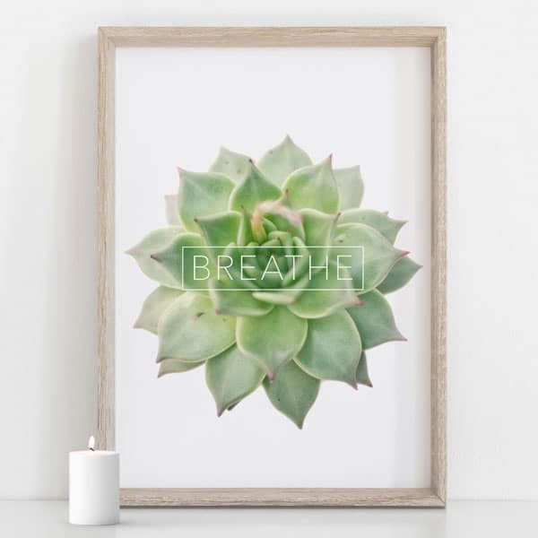 Green Succulent wall art with teh word BREATHE for home decor