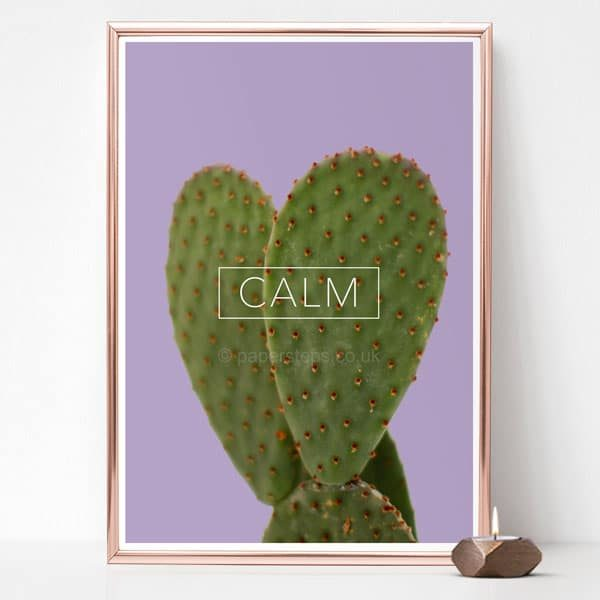 Calm poster on a succulent cactus wall art - Purple background