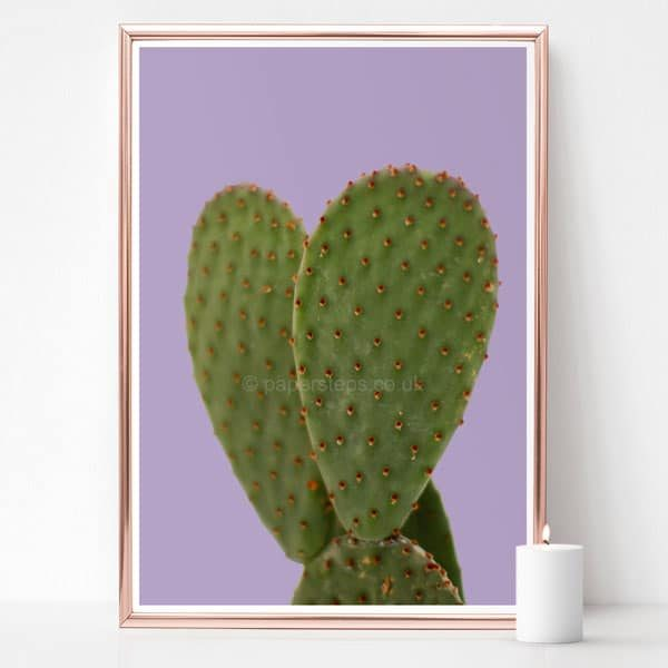 Purple background Cactus botanical wall art photographic poster print