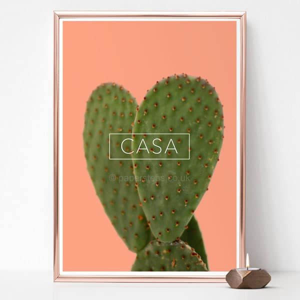 Bright floral art, Cactus photo on salmon pink in silver frame