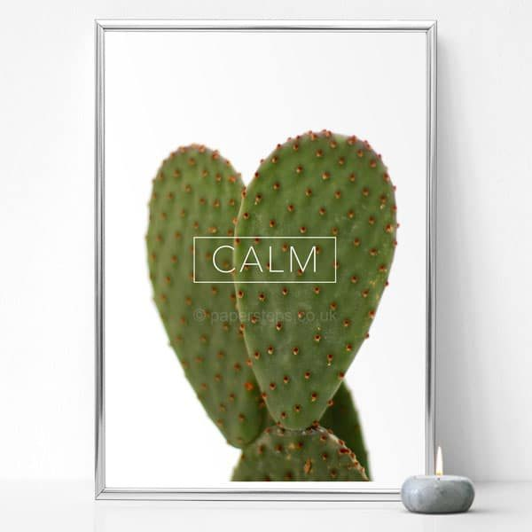 Calm typographic poster print over a succulent cactus photo